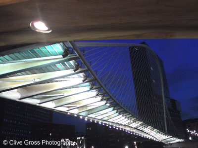 Zubizuri Bridge at Night Bilbao